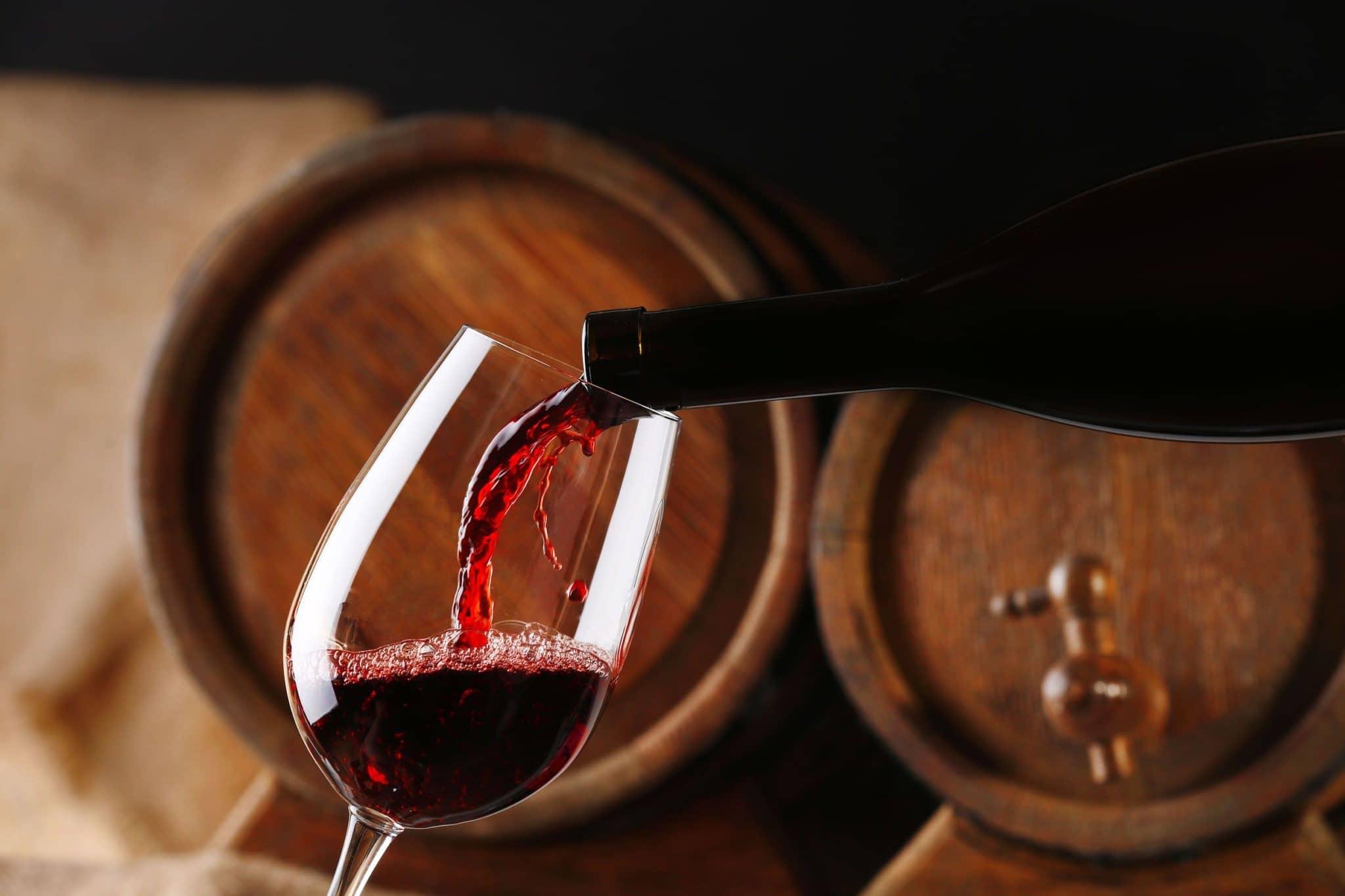 O que fazer no inverno em Montevidéu: degustação de vinhos uruguaios