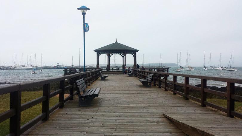 Deficientes físicos em Punta del Este: Porto de Punta del Este